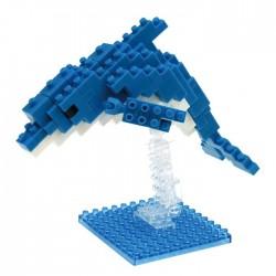 Bottlenose Dolphin (new...