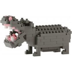 Hippopotamus NBC-049...