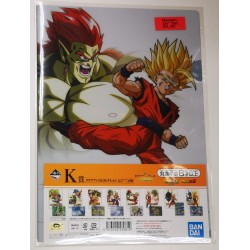 DRAGONBALL folder clear...