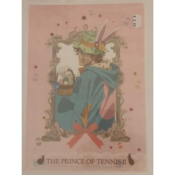 THE PRINCE OF TENNIS folder...