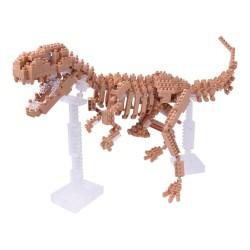 T-Rex-Skelett NBM-012...