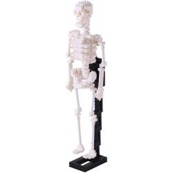 Squelette humain NBM-014 NANOBLOCK mini bloques de construction...